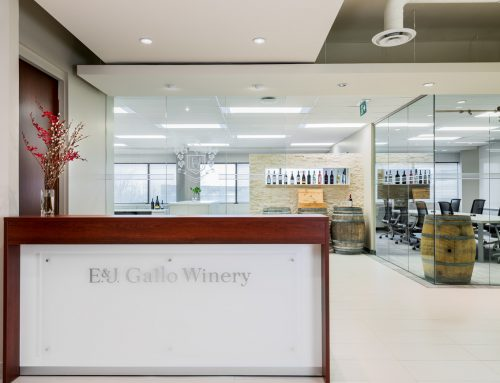 Gallo Wines – Office Reception Area
