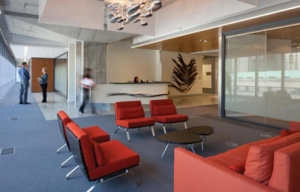 Seating area at reception. Chairs by Ligne Roset, lighting fixture by Ross Lovegrove.